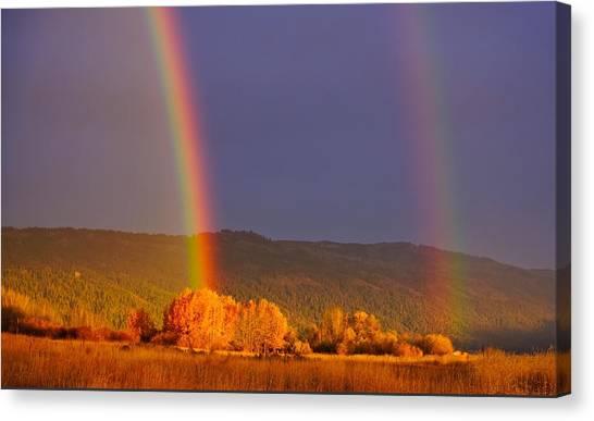 Double Gold Canvas Print