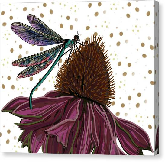 Dragon Fly And Echinacea Flower Canvas Print