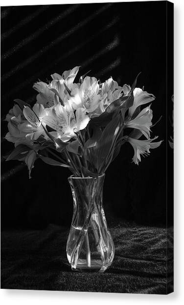 Dramatic Flowers-bw Canvas Print