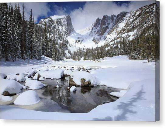 Treeline Canvas Print - Dream Lake Winter Reflections  by Bridget Calip