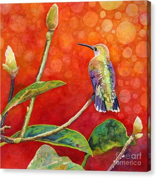 Hummingbirds Canvas Print - Dreamy Hummer by Hailey E Herrera