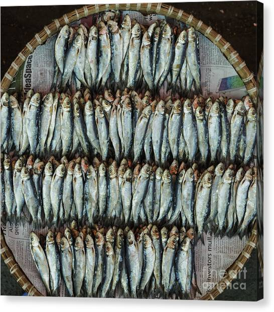 Fish Market Canvas Print - Dried Fish, Or Tuyo, On A Wicker Basket by David Guyler