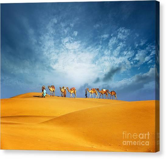 Caravan Canvas Print - Dubai Desert Camel Safari. Arab by Banana Republic Images