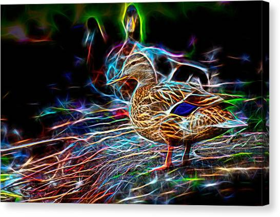 Ducks On Shore Wizard Canvas Print