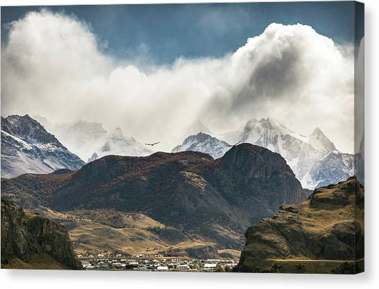 Condors Canvas Print - Duiqin by Ryan Weddle