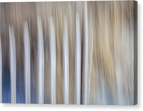 Dune Fence Canvas Print