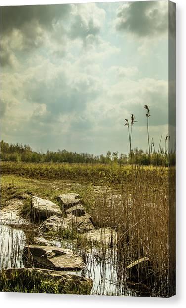 Canvas Print featuring the photograph Dutch Landscape. by Anjo Ten Kate
