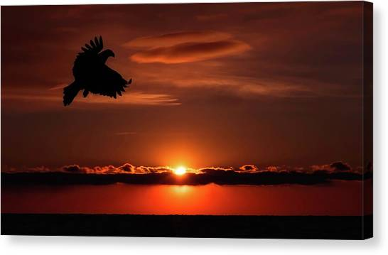 Eagle In A Red Sky Canvas Print