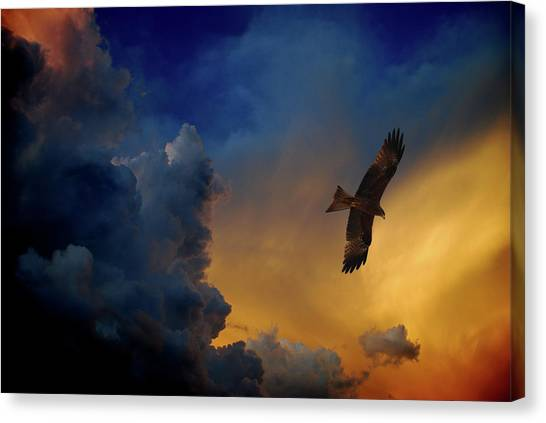 Eagle Over The Top Canvas Print by Gopan G Nair