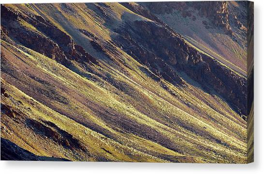 Early Morning Light On The Hillside In Sarchu Canvas Print