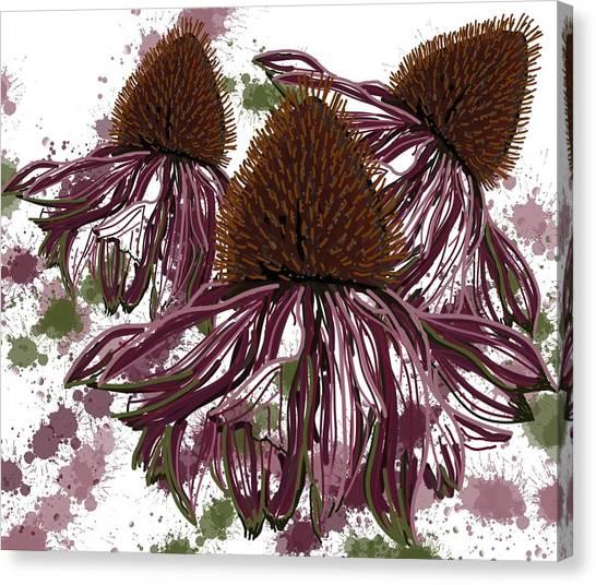 Echinacea Flowers Line Canvas Print