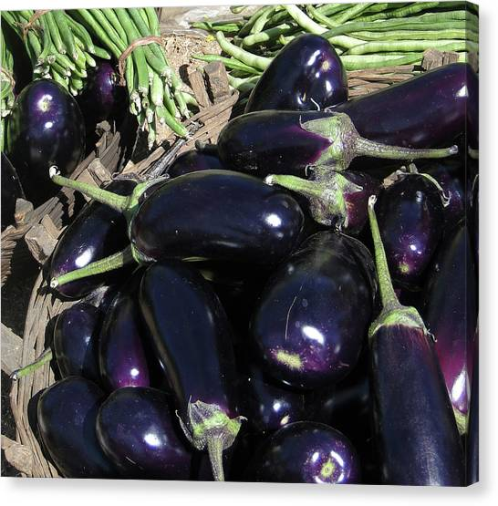 Eggplants   For Sale In In Chatikona  Canvas Print