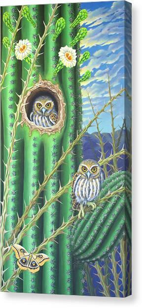 Elf Owls In The Saguaro Cactus Canvas Print