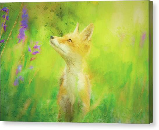 Canvas Print - Enchanted Fox by Amanda Lakey