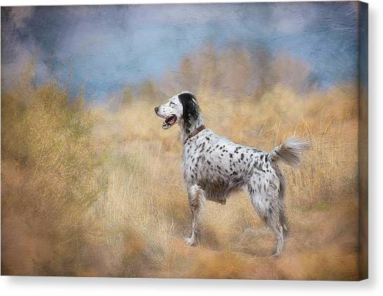 English Setter Dog Canvas Print