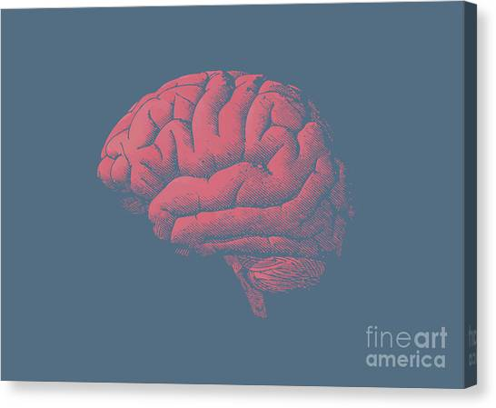 Shadow Canvas Print - Engraving Brain Illustration With Tint by Jolygon