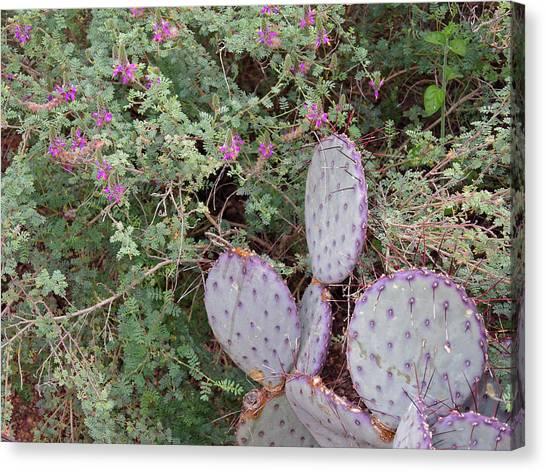 Canvas Print featuring the photograph Ensconced Prickly Pear 5 by Lynda Lehmann
