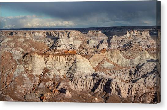 Petrified Forest Canvas Print - Evening Light by Joseph Smith