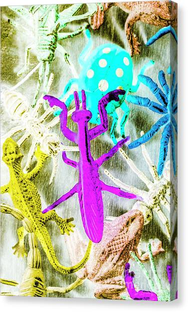 Multi Canvas Print - Exotic Creatures by Jorgo Photography - Wall Art Gallery