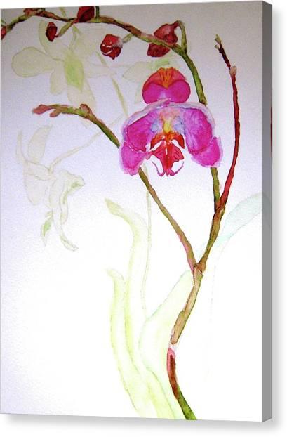 Exotic Dancer Canvas Print