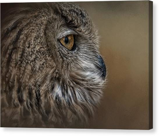 Eye Of Wisdom  Canvas Print
