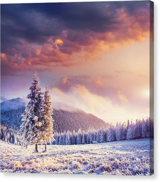 Hoarfrost Canvas Print - Fabulous Winter Landscape In The by Standret