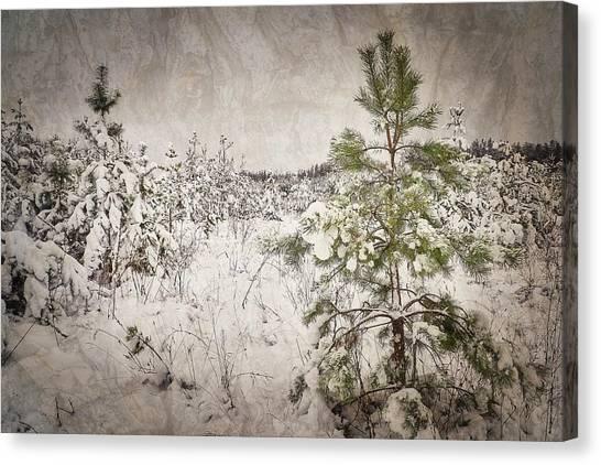 Fairytale Of Winter Forest. Shchymel, 2018. Canvas Print