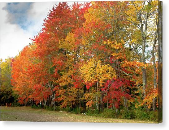Canvas Print featuring the photograph Fall Colors by Doug Camara