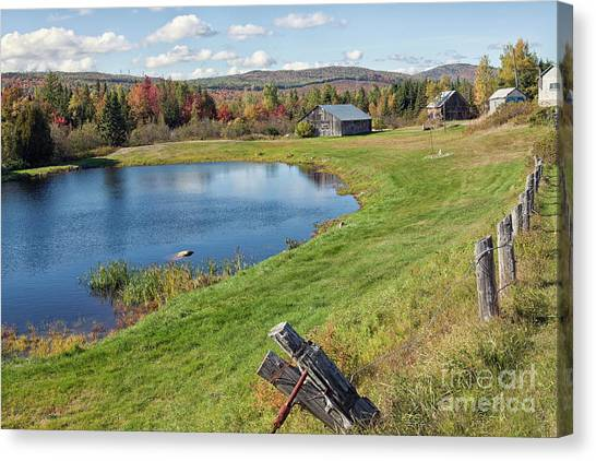 Canvas Print featuring the photograph Fall Colors In Port Au Persil by Tatiana Travelways