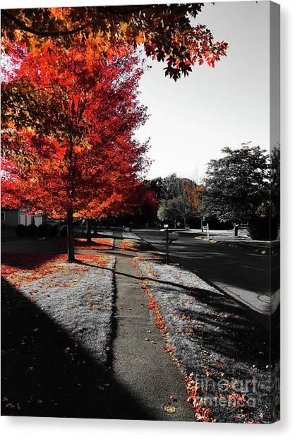 Fiery Fall Trees, Part 1 Canvas Print by JMerrickMedia