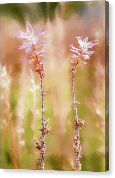 Canvas Print featuring the photograph Fall Is Here by Rob Huntley