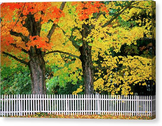 Falls Colors In New Hampshire Canvas Print by Great Art Productions