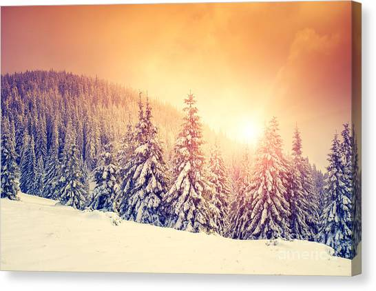Hoarfrost Canvas Print - Fantastic Evening Landscape In A by Creative Travel Projects