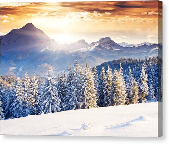 Hoarfrost Canvas Print - Fantastic Evening Winter Landscape by Creative Travel Projects