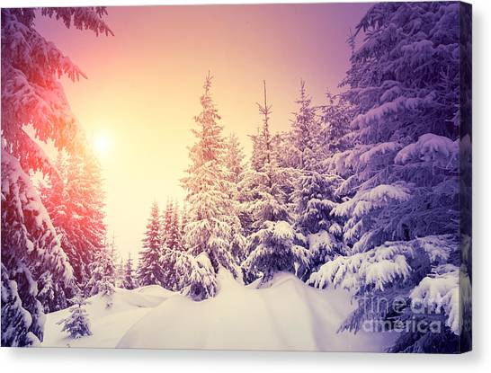 Hoarfrost Canvas Print - Fantastic Landscape Glowing By by Creative Travel Projects
