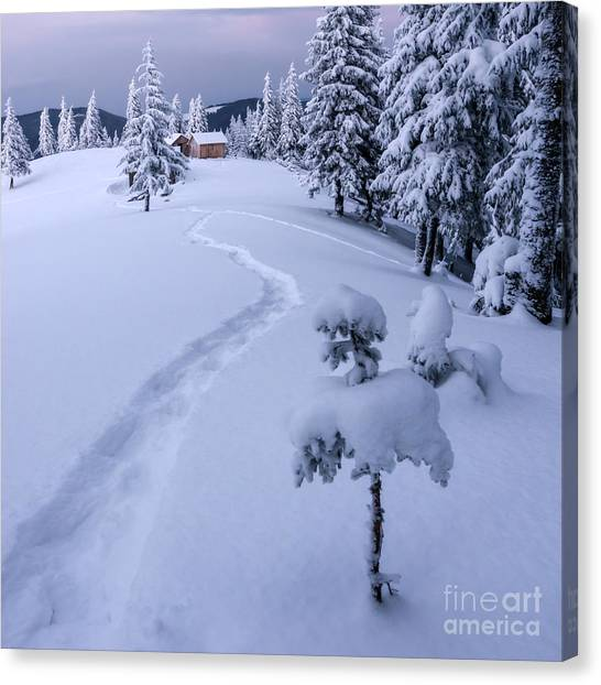 Hoarfrost Canvas Print - Fantastic Winter Landscape With Snowy by Smit