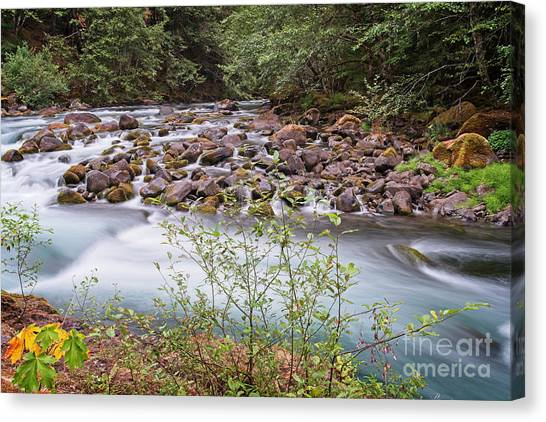 Canvas Print featuring the photograph Fast Water by Craig Leaper