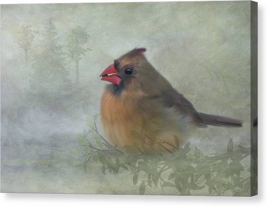 Canvas Print featuring the photograph Female Cardinal With Seed by Patti Deters