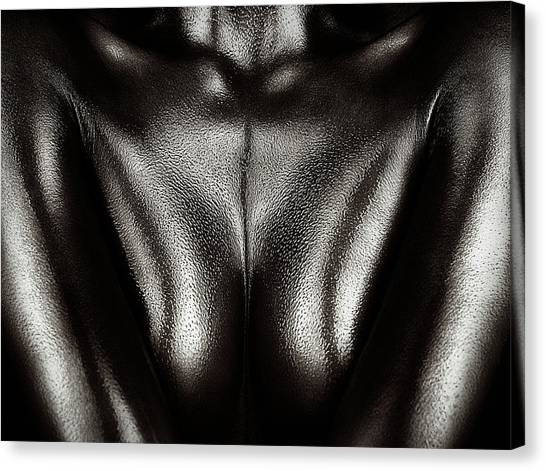 Abstract Nude Canvas Print - Female Nude Silver Oil Close-up 2 by Johan Swanepoel