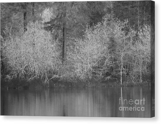 Canvas Print featuring the photograph Filter Series 200b by Jeni Gray