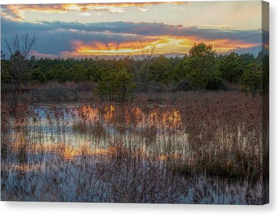 Canvas Print featuring the photograph Fire In The Sky Over The Pines by Kristia Adams