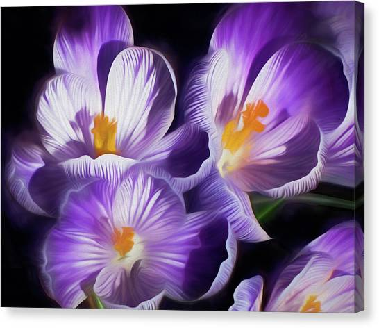 Canvas Print featuring the mixed media First Crocuses On The Sunny Side Of The Street by Lynda Lehmann