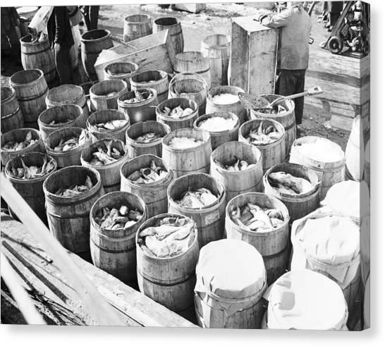 Fish Market Canvas Print - Fish For Sale In Barrels At The Fulton by Bert Morgan