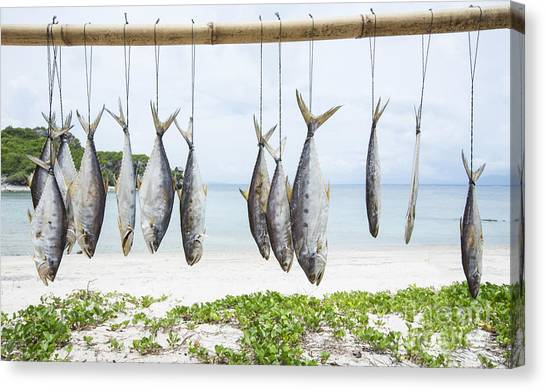 Fish Market Canvas Print - Fish Preservation By Drying In Thailand by Chirawan Thaiprasansap