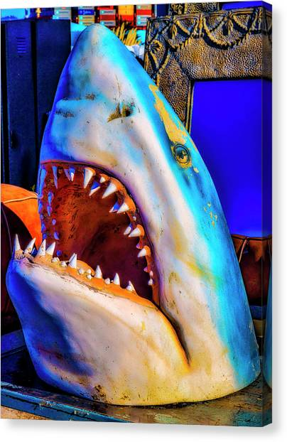 Fleas Canvas Print - Flea Market Shark by Garry Gay
