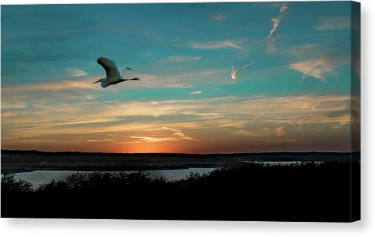 Flight To The Lake Canvas Print