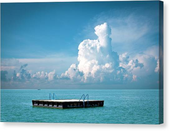 Floating On Water Canvas Print