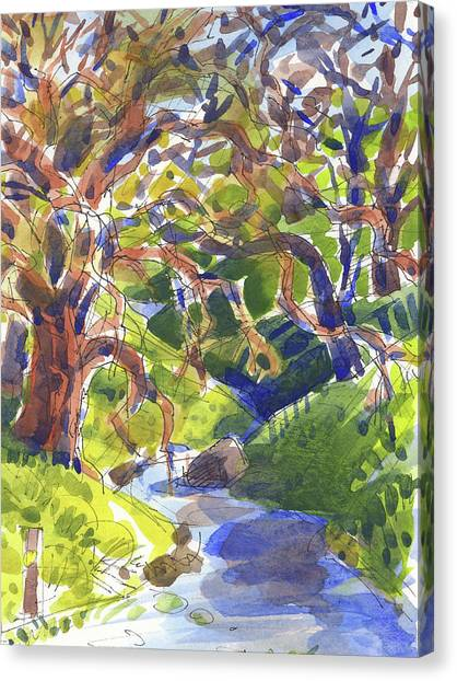 Flooded Trail Canvas Print
