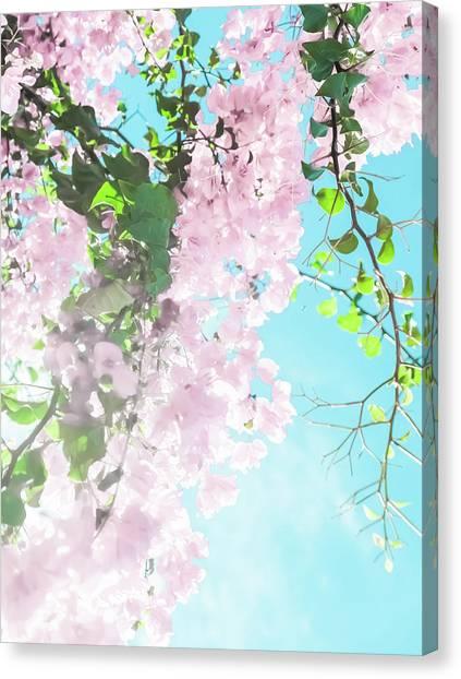 Floral Dreams IIi Canvas Print