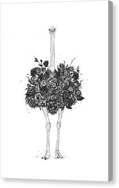 Spring Canvas Print - Floral Ostrich by Balazs Solti